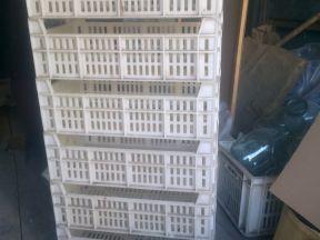 Ящики пластмассовые сх